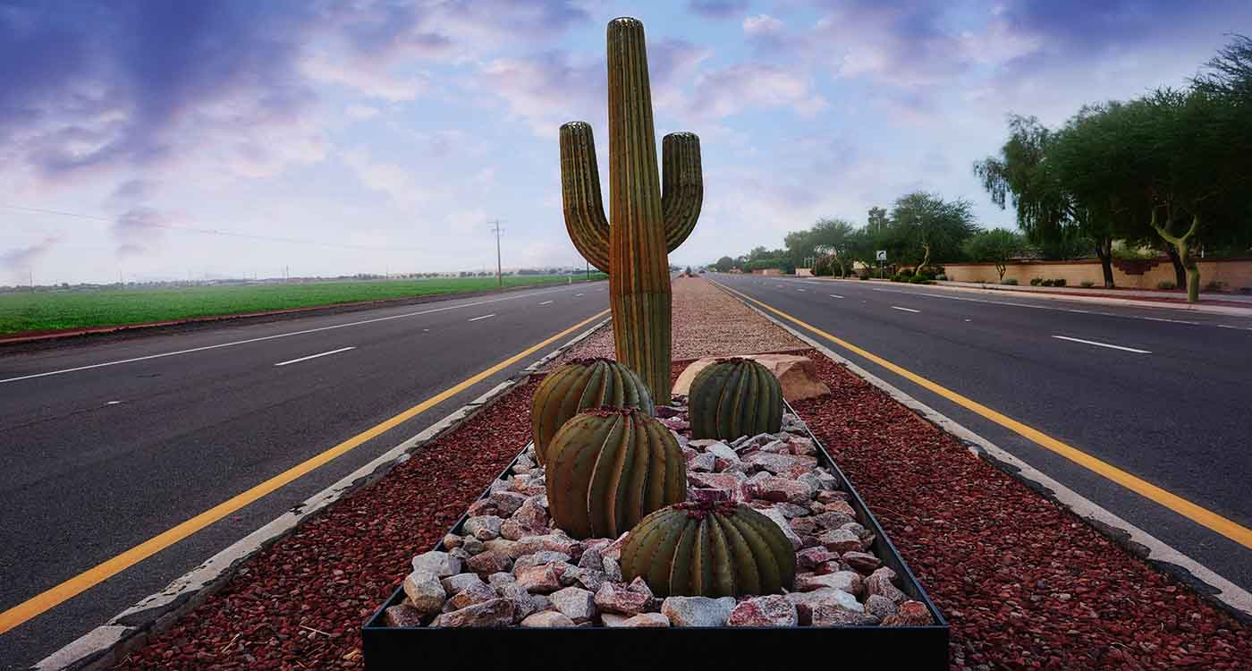 Arizona Highway with Cactus
