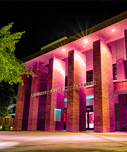 Chandler Police Department lit in purple in reflection of Domestic Violence Awareness Month
