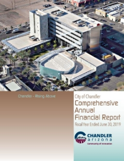 Comprehensive Annual Financial Report for Fiscal Year 2019
