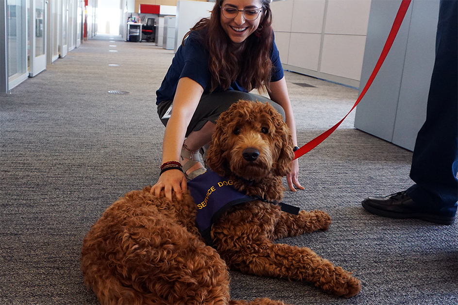 The Family Advocacy Center service dog (a Goldendoodle named Annie)
