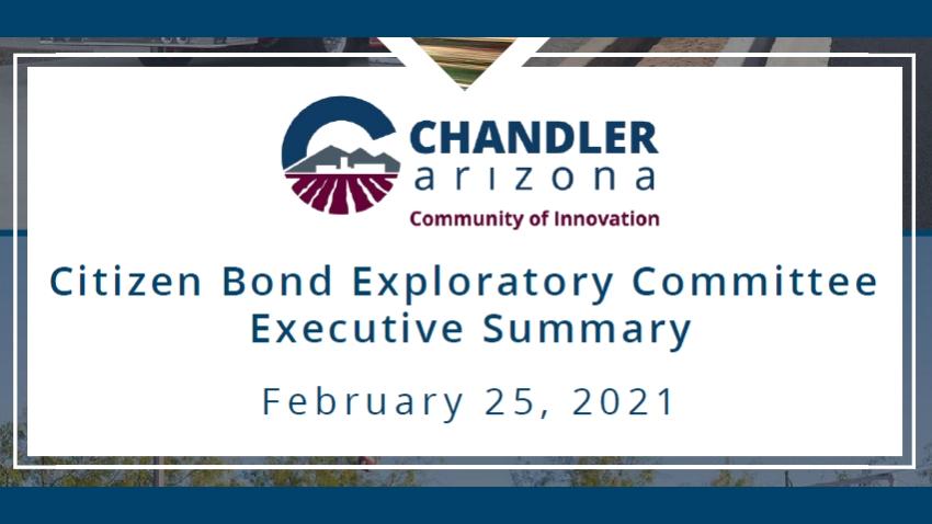 Citizen Bond Exploratory CommitteeExecutive Summary