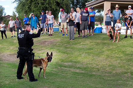 Chandler PD K-9 Unit demonstration at a GAIN event