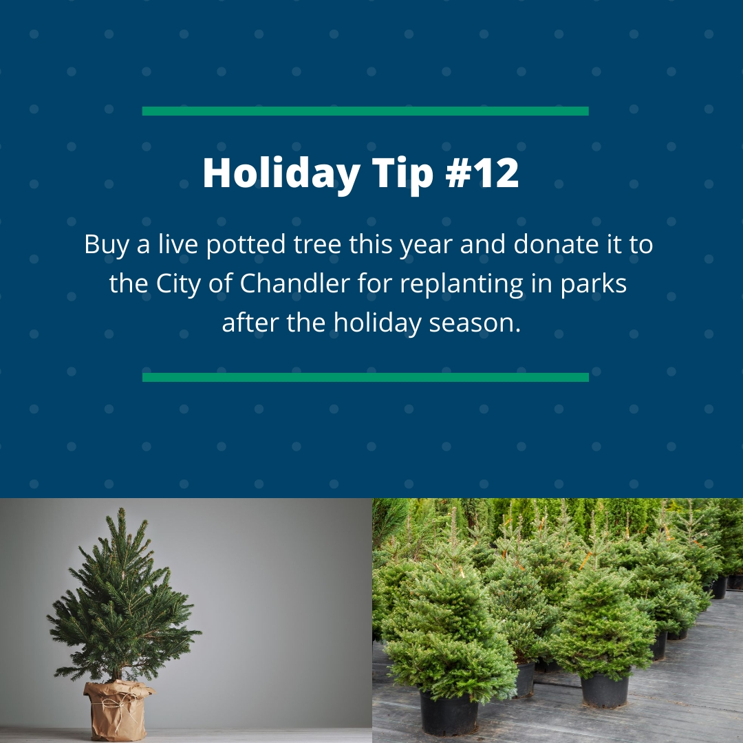 Holiday Tip #12