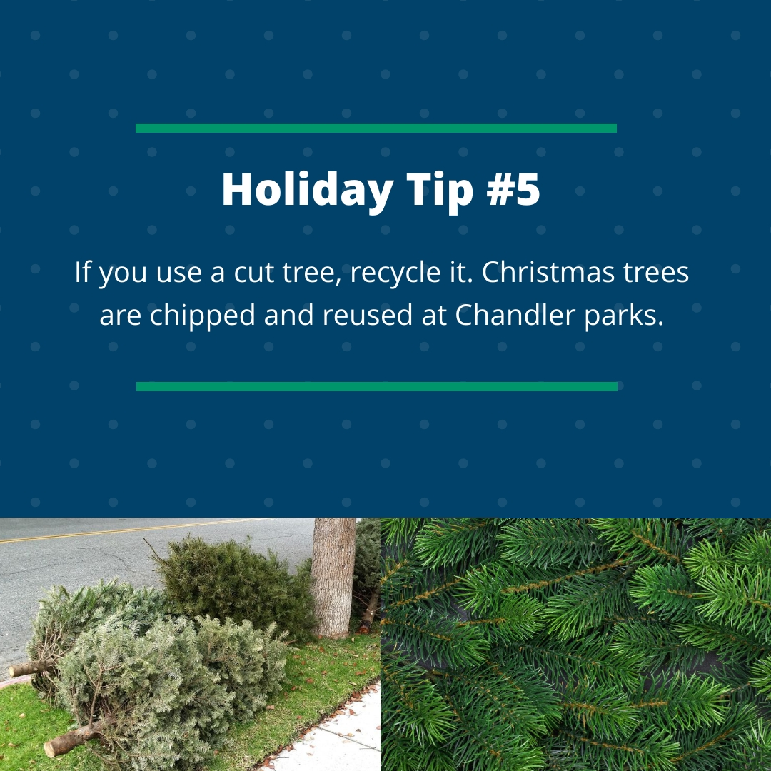 Holiday Tip #5