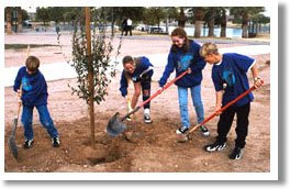 Living Tree Donation Program