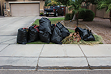photo of trash bags left at curb