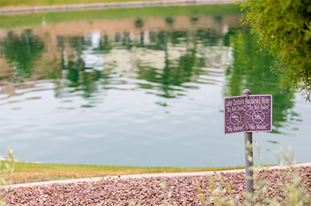 Look for the purple valve boxes, sprinkler heads and signs to know you're in an area