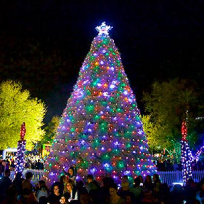 Tumbleweed Tree Lighting