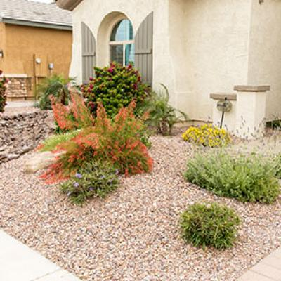 Yard with a Xeriscape Landscape