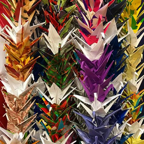 origami cranes at the Chandler Museum