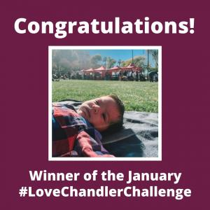 January Love Chandler Challenge Winner